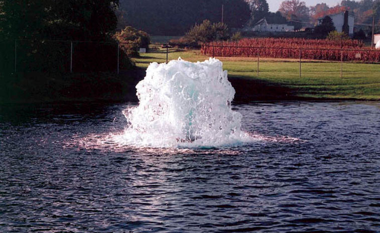 Otterbine Neptune Large Aerating Fountain